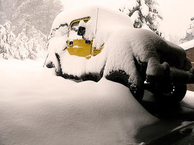 Snow 2009 04 (2)