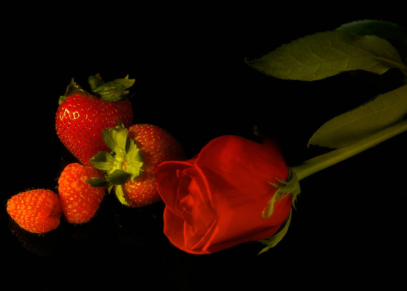Still LIfe, 9/12, roses and strawberries