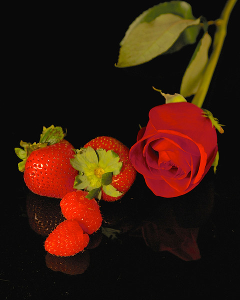 Still Life 9/12, roses and strawberries