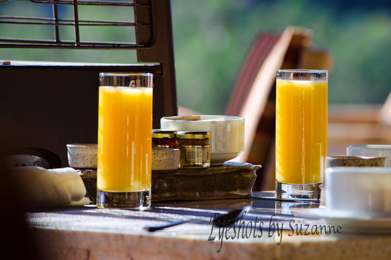 Breakfast at the Ritz  It was our anniversary weekend and we spent it at the Ritz-Carlton in Tucson.  What a fabulous resort!  We were enjoying our breakfast on the outdoor patio and I looked over and noticed this fabulous light on the beautiful orange juice glasses and had to photograph it!  Hope it makes you hungry for breakfast!