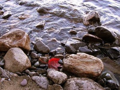 Autumn leaves, Moosehead Lake, ME