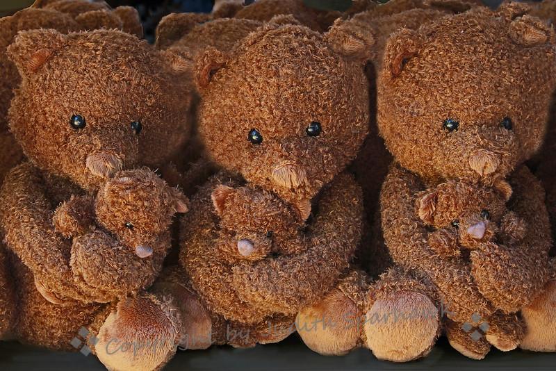 Teddies Three ~ Or should I say Teddies 6?  These bears were hugging their baby teddies very lovingly.