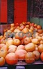 "Pumpkin Glory.  Ralph had these stacked up at the side of his building which you can see in ""Ralph's Produce.""  Love the little green one and the great colors."