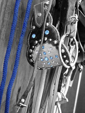 2012 10 Sedona Birthday 30 select color