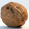 """W"" is for Walnut,<br /> for Donna's Alphabet Challenge..<br /> <br /> A walnut is an edible seed of any tree of the genus Juglans, especially the Persian or English walnut, Juglans regia. <a href=""http://en.wikipedia.org/wiki/Walnut"">http://en.wikipedia.org/wiki/Walnut</a><br /> <br /> Thank you for your views and comments!<br /> <br /> Critiques welcome...<br /> <br /> Jesus told her, ""I am the resurrection and the life. Anyone who believes in me will live, even after dying. John 11:25 NLT<br /> <br /> 15 December 2013"