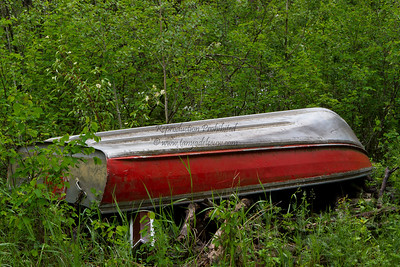 A boat in the bush is worth ... ?