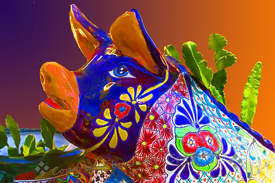 Ms. Piggie ~ This colorful ceramic pig was in a garden gift shop I visited recently.  I liked its colors and expression.