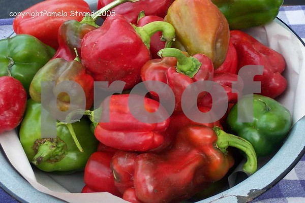 100_2224Peppers 4 with bowl  despecked copy small