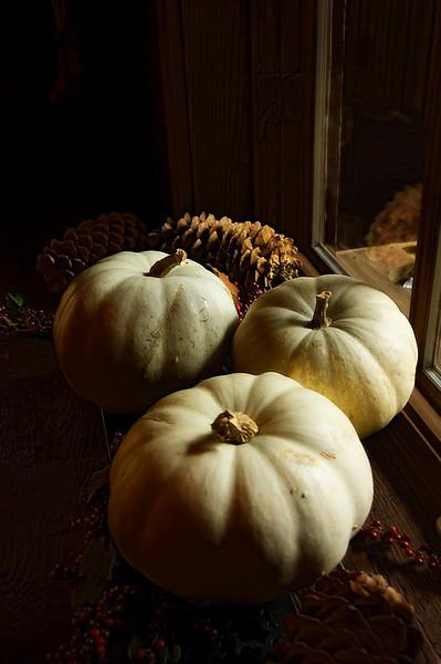 Sundance Pumpkins