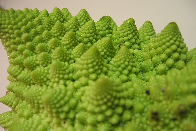 Romanesco Cauliflower edge very cl