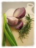 Red and green onion, rosemary on white cutting board in Mexican cooking class [edgefade10 frame]