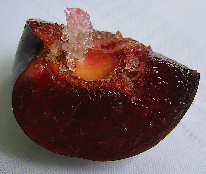 20060714 Organic red plum with crystal growing inside