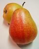 Forelle Pear (portrait)