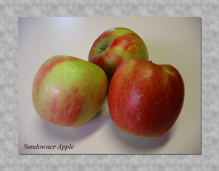 Sundowner apple trio [simple caption script]