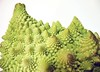 Romanesco Cauliflower edge very cl 2