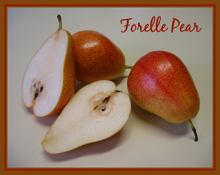 Forelle Pears with one cut in half [text, borders]
