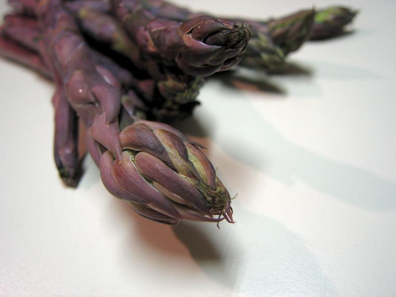Purple asparagus 2