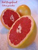 Red Grapefruit 2 [text]