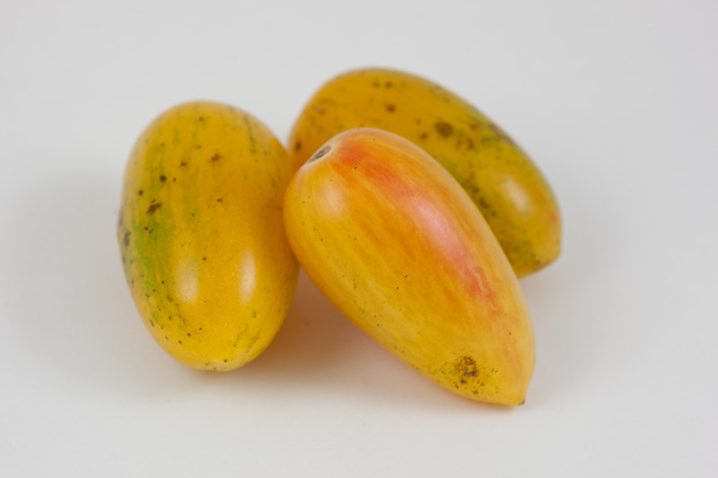 20140903 Heirloom Tomato (1338)