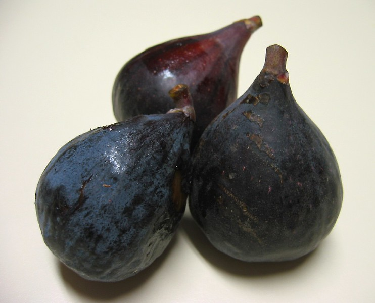 Black Mission Figs - Trio 2
