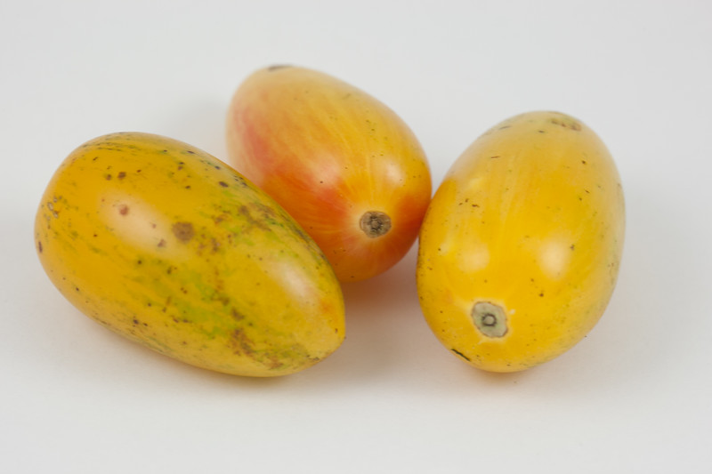 20140903 Heirloom Tomato (1336)