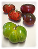 Heirloom tomato - Green Zebra and (2 intact, 1 halved) Cherokee Purple [edgefade10 frame]