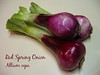 00aFavorite Trio of red spring onion [text]