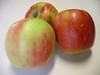 Sundowner apple trio 2