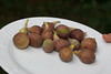 00aFavorite 20120803 Freshly picked figs from our garden (1926)
