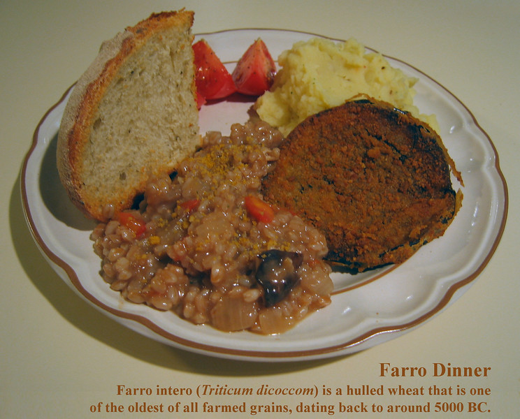Dinner with farro, an ancient grain [text]