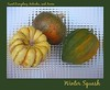 00aFavorite Trio of winter squashes - sweet dumpling, kabocha, and acorn [bg glass mosaic, borders, text]