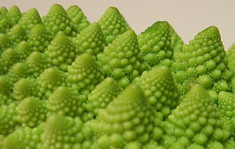 00aFavorite Romanesco Cauliflower edge very cl tight crop
