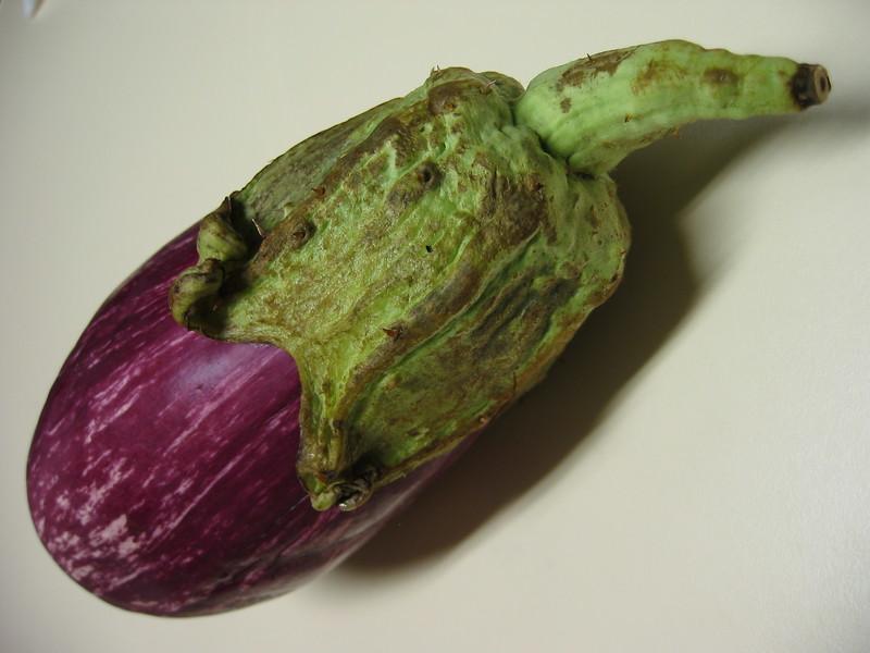 IMG_2658 [grafitti eggplant]