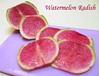 Watermelon Radish slices on pinkish purple cutting board [text]