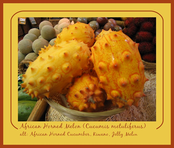 African horned melon, Whole Foods, Durham [borders, text]