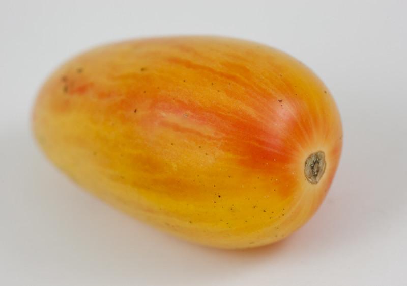 00aFavorite 20140903 Heirloom Tomato (1337)