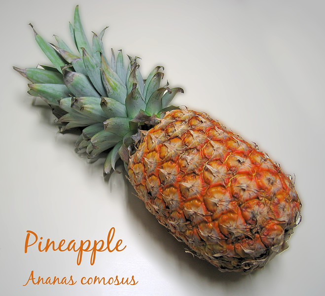 Pineapple [text]