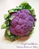 00aFavorite img9715 ready to print 8x10 Purple Cauliflower (actually a broccoli) Brassica oleracea var italica cl [text]