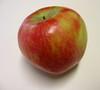 Sundowner apple