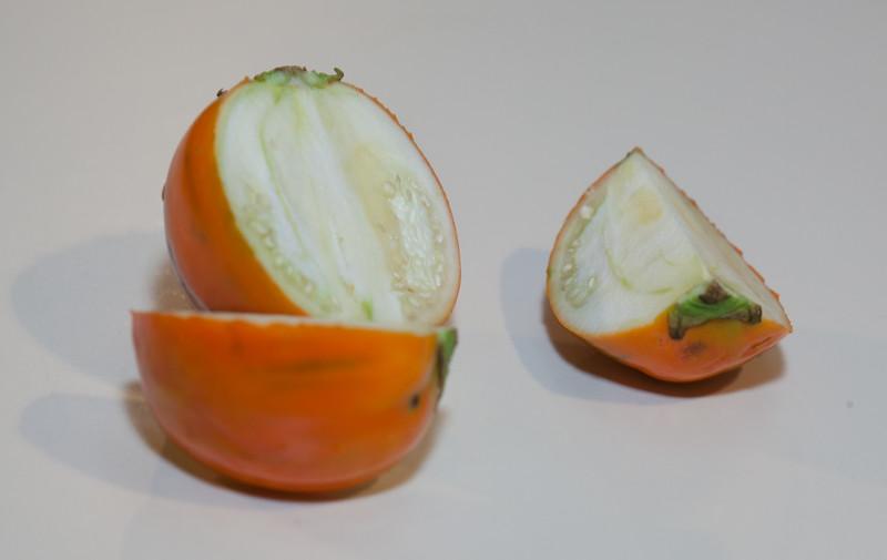 20130727 Heirloom Turkish Eggplant (1859)