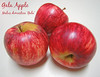 Gala Apple trio 2 [text]