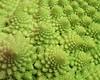 00aFavorite Romanesco Cauliflower (Brassica oleracea 'Minaret') very cl - textures