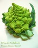 img9788 ready to print 8x10 Romanesco Cauliflower (Brassica oleracea 'Minaret') [text]