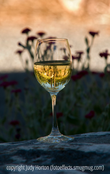 Reflections in a glass of wine