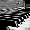 Piano keys-black and white