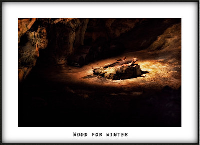 Wood for winter