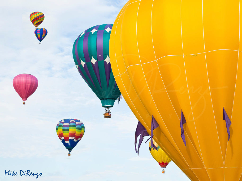Balloon Festival  1699  w21