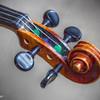 Violin (detail)  11513  w24