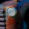 Old Chevy  Headlight 6332