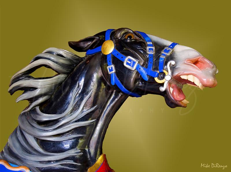 Carousel Horse 2020